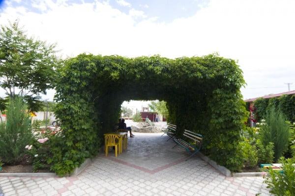 Беседки под виноград фото