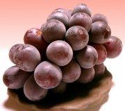Крупный виноград - это реально!