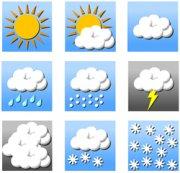 Влияние погодных условий на развитие виноградника