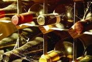 Специальные виды виноделия